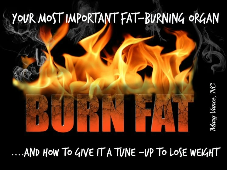 Fix Your Most Important Fat Burning Organ