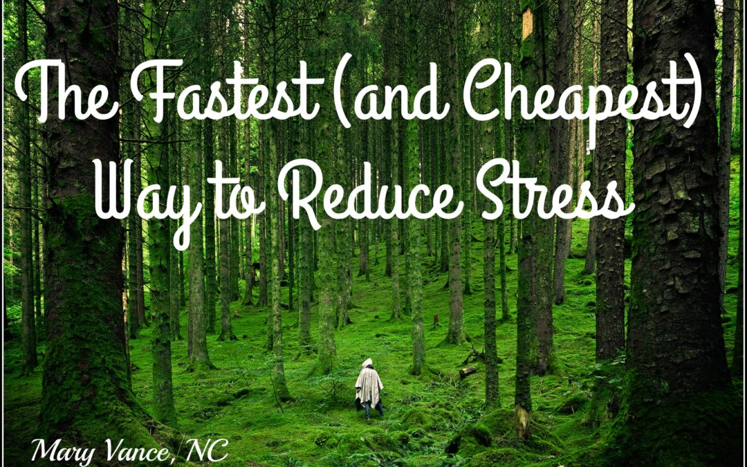 The Fastest & Cheapest Way to Reduce Stress