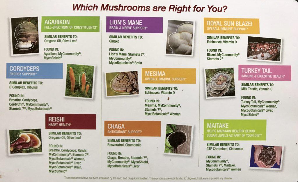 medicinal-mushroom-chart