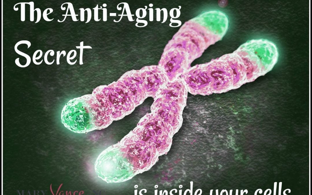 How to Stay Young: The Anti-Aging Secret