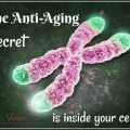 The Anti-Aging Secret--Mary Vance, NC